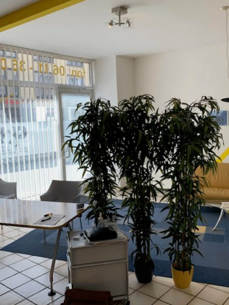 Büro Wiesbaden innen 2-1